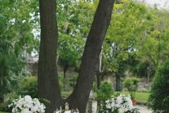Wedding Mandana 10